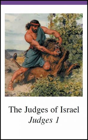 Judges to Kings Bible Cards - Detweiler - Bible