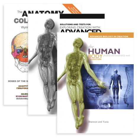Anatomy & Physiology - Live Course & You Teach Kit